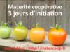 Initiation à la Maturité Coopérative